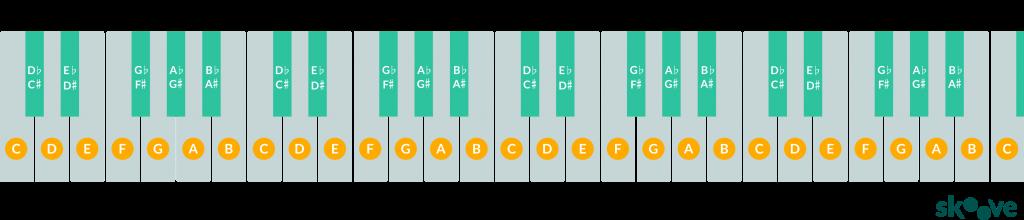 49 keyboard diagram